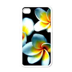 Flowers Black White Bunch Floral Apple Iphone 4 Case (white) by Nexatart