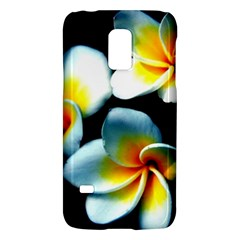 Flowers Black White Bunch Floral Galaxy S5 Mini by Nexatart