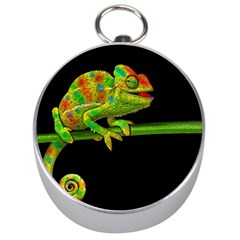 Chameleons Silver Compasses by Valentinaart