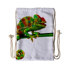 Chameleons Drawstring Bag (small) by Valentinaart