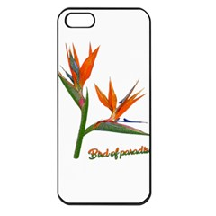 Bird Of Paradise Apple Iphone 5 Seamless Case (black) by Valentinaart