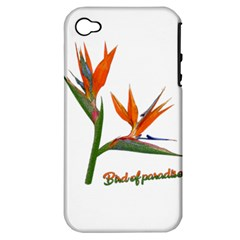Bird Of Paradise Apple Iphone 4/4s Hardshell Case (pc+silicone) by Valentinaart
