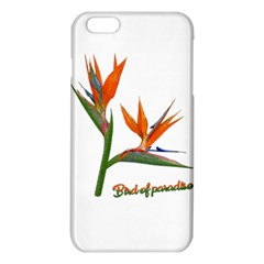 Bird Of Paradise Iphone 6 Plus/6s Plus Tpu Case by Valentinaart
