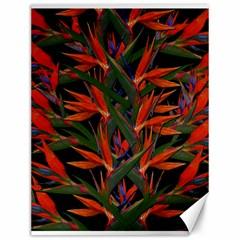 Bird Of Paradise Canvas 12  X 16   by Valentinaart