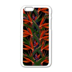 Bird Of Paradise Apple Iphone 6/6s White Enamel Case by Valentinaart
