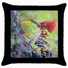 Woodpecker At Forest Pecking Tree, Patagonia, Argentina Throw Pillow Case (black) by dflcprints