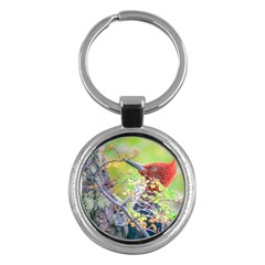 Woodpecker At Forest Pecking Tree, Patagonia, Argentina Key Chains (round)  by dflcprints