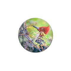 Woodpecker At Forest Pecking Tree, Patagonia, Argentina Golf Ball Marker (10 Pack) by dflcprints