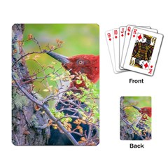 Woodpecker At Forest Pecking Tree, Patagonia, Argentina Playing Card by dflcprints