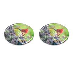 Woodpecker At Forest Pecking Tree, Patagonia, Argentina Cufflinks (oval) by dflcprints