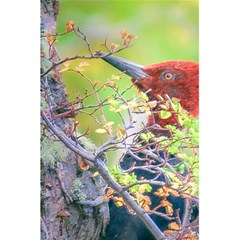 Woodpecker At Forest Pecking Tree, Patagonia, Argentina 5 5  X 8 5  Notebooks by dflcprints