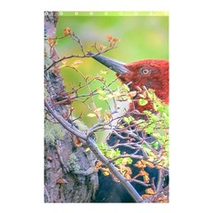 Woodpecker At Forest Pecking Tree, Patagonia, Argentina Shower Curtain 48  X 72  (small)  by dflcprints