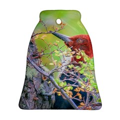 Woodpecker At Forest Pecking Tree, Patagonia, Argentina Ornament (bell) by dflcprints
