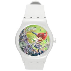 Woodpecker At Forest Pecking Tree, Patagonia, Argentina Round Plastic Sport Watch (m) by dflcprints