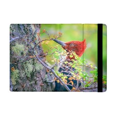 Woodpecker At Forest Pecking Tree, Patagonia, Argentina Apple Ipad Mini Flip Case by dflcprints