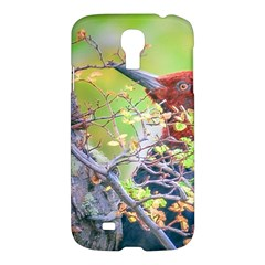 Woodpecker At Forest Pecking Tree, Patagonia, Argentina Samsung Galaxy S4 I9500/i9505 Hardshell Case by dflcprints