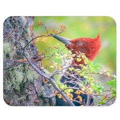 Woodpecker At Forest Pecking Tree, Patagonia, Argentina Double Sided Flano Blanket (medium)  by dflcprints