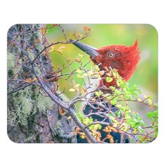 Woodpecker At Forest Pecking Tree, Patagonia, Argentina Double Sided Flano Blanket (large)  by dflcprints