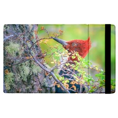 Woodpecker At Forest Pecking Tree, Patagonia, Argentina Apple Ipad Pro 12 9   Flip Case by dflcprints