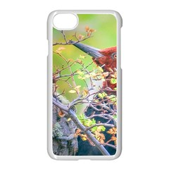 Woodpecker At Forest Pecking Tree, Patagonia, Argentina Apple Iphone 7 Seamless Case (white) by dflcprints