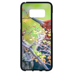 Woodpecker At Forest Pecking Tree, Patagonia, Argentina Samsung Galaxy S8 Black Seamless Case by dflcprints