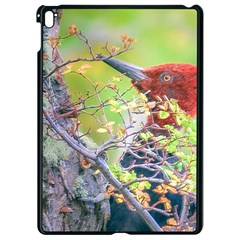 Woodpecker At Forest Pecking Tree, Patagonia, Argentina Apple Ipad Pro 9 7   Black Seamless Case by dflcprints