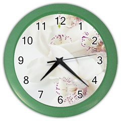 Orchids Flowers White Background Color Wall Clocks by Nexatart