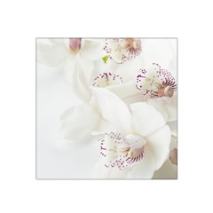 Orchids Flowers White Background Satin Bandana Scarf by Nexatart