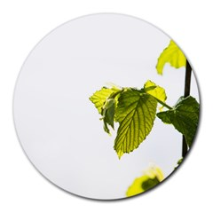 Leaves Nature Round Mousepads by Nexatart