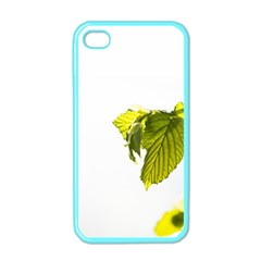 Leaves Nature Apple Iphone 4 Case (color) by Nexatart