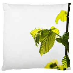 Leaves Nature Large Cushion Case (two Sides) by Nexatart