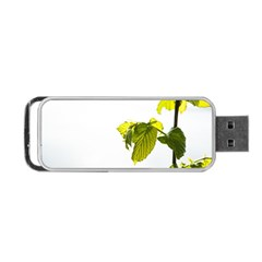 Leaves Nature Portable Usb Flash (one Side) by Nexatart