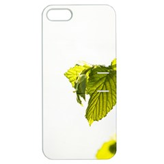 Leaves Nature Apple Iphone 5 Hardshell Case With Stand by Nexatart