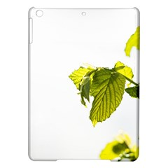 Leaves Nature Ipad Air Hardshell Cases by Nexatart