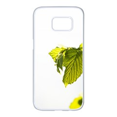 Leaves Nature Samsung Galaxy S7 Edge White Seamless Case by Nexatart