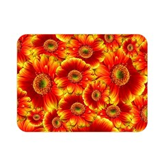 Gerbera Flowers Nature Plant Double Sided Flano Blanket (mini)  by Nexatart