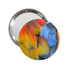 Spring Parrot Parrot Feathers Ara 2 25  Handbag Mirrors by Nexatart