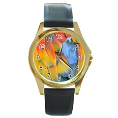 Spring Parrot Parrot Feathers Ara Round Gold Metal Watch by Nexatart