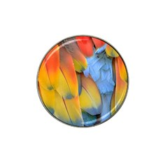 Spring Parrot Parrot Feathers Ara Hat Clip Ball Marker (4 Pack) by Nexatart