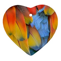 Spring Parrot Parrot Feathers Ara Heart Ornament (two Sides) by Nexatart