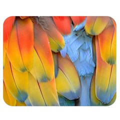 Spring Parrot Parrot Feathers Ara Double Sided Flano Blanket (medium)  by Nexatart