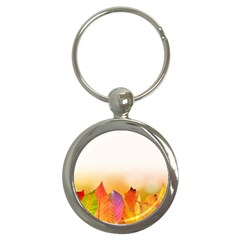 Autumn Leaves Colorful Fall Foliage Key Chains (round)  by Nexatart