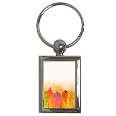 Autumn Leaves Colorful Fall Foliage Key Chains (rectangle)  by Nexatart