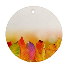 Autumn Leaves Colorful Fall Foliage Round Ornament (two Sides) by Nexatart
