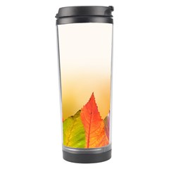 Autumn Leaves Colorful Fall Foliage Travel Tumbler by Nexatart