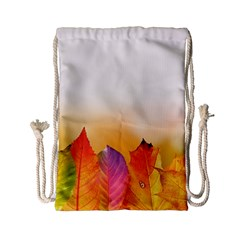 Autumn Leaves Colorful Fall Foliage Drawstring Bag (small) by Nexatart