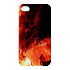Fire Log Heat Texture Apple Iphone 4/4s Hardshell Case by Nexatart
