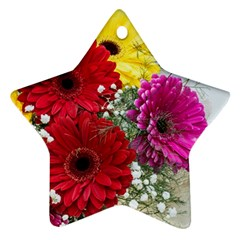 Flowers Gerbera Floral Spring Ornament (star) by Nexatart