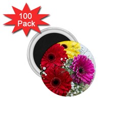 Flowers Gerbera Floral Spring 1 75  Magnets (100 Pack)  by Nexatart
