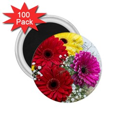 Flowers Gerbera Floral Spring 2 25  Magnets (100 Pack)  by Nexatart